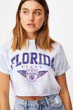 Tamara Printed Crop T Shirt, TIE DYE/FLORIDA